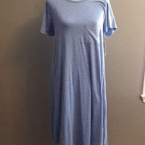 Dresses & Skirts - NWT Large Carly